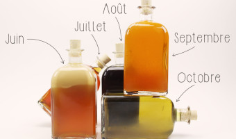 [Arrange.fr] Assurez-vous de déguster dans un transat le Vanille macerées dans du Père Labat!