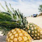 Rhum arrangé ananas, soleil à la maison !